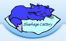 Blue Haze Cattery