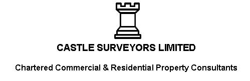 Castle Surveyors