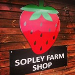 sopley farm